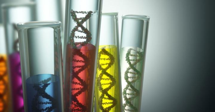 test tubes with DNA strands inside