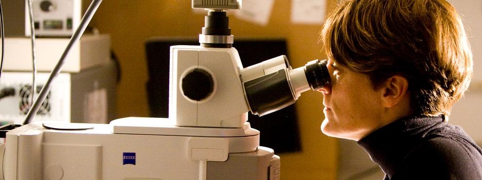 Model Organisms Research in progress