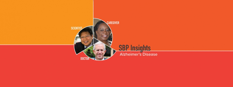 SBP Insights Graphic