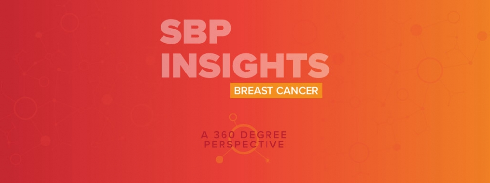 SBP Insights Graphic