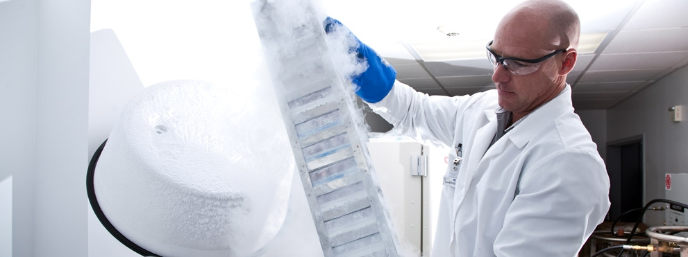 scientist at work in stem cell center