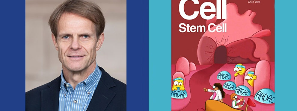 Lorenz Studer, M.D. profile photo with Cell Stem Cell Press cover
