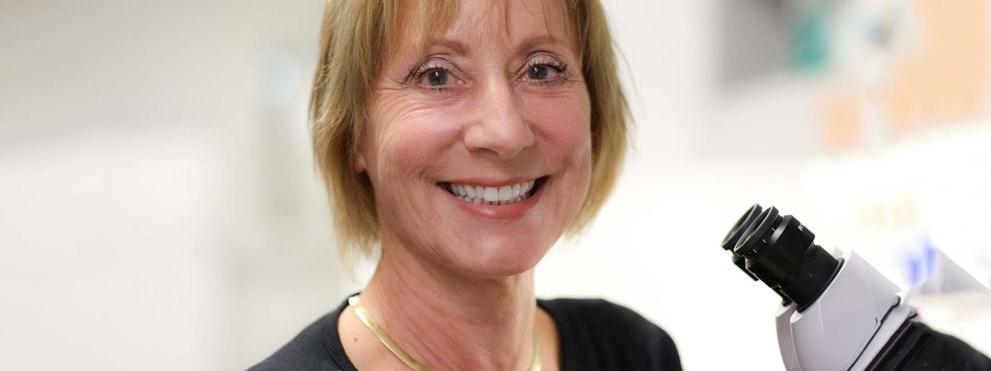 Karen Ocorr, Ph.D.