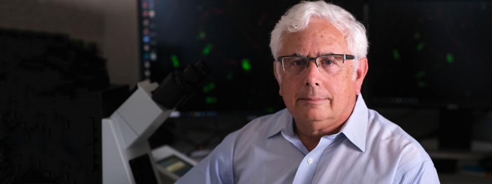 Ze'ev Ronai, Ph.D. headshot in lab
