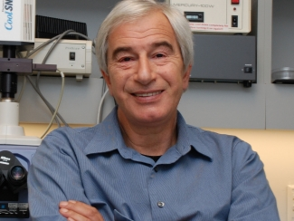 Alex Strongin, Ph.D., in the lab