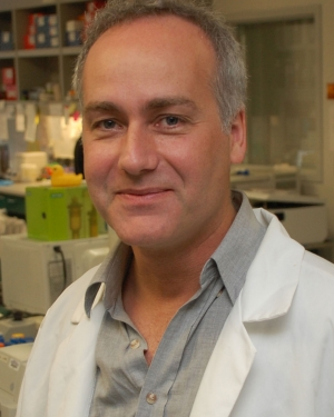 Marcus Kaul, Ph.D. in the lab