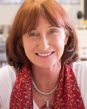 Barbara Ranscht, Ph.D., headshot
